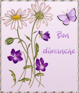 BON DIMANCHE  dans divers bon-dimanche-2-255x300